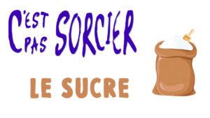 C'est pas Sorcier : Le sucre